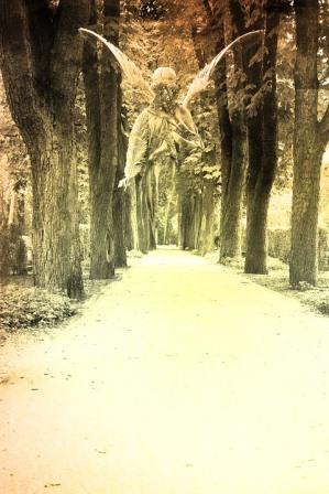 Presenze tra noi: spiriti guida, defunti, Angeli e Arcangeli